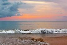 beach escape / I love the beach / by Crystal Archer
