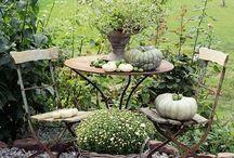 terasa podzim