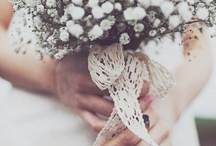 Stylish Simplicity / Neural pallet of white and green creates a simple and stylish white wedding