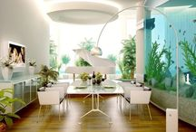 Hildon Picks: Interior Design