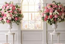 Wedding consultation / ideas