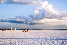 Florida / by Tina Wilhelm Cook