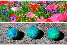 Theme: Earth Day