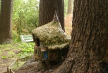 Fairy houses / by Susan Echols