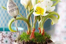 puutarha ja kukat
