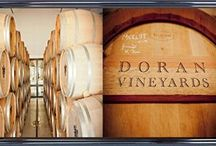 Doran Vineyards  / Great news that Doran Vineyards from the Voor-Paardeberg region have selected Winehouse for their Johannesburg media lunch in April and that the Irish owner, Edwin Doran and wine route pioneer Andre Badenhorst will be presenting their latest vintages including their highly rated Chenin Blanc.