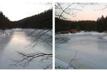 Padurile din Anina si Lacul Buhui iarna