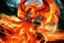 Phoenix / Animal Totem