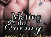 Paranormal Wars:  Stone Haven / Book series