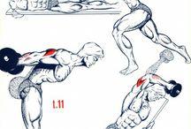Gym Tips - Arms
