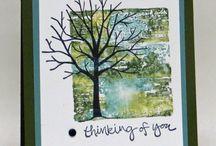 SU! sheltering tree