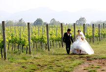 マリアージュなぶどう畑ウェディング / ワイン好きのカップルが挙げるぶどう畑挙式&ワインにあう披露宴