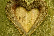 corazones y naturaleza