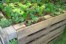 Garden Stuff / Cool stuff for the garden
