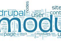 Drupal Developmentg / All about drupal solution