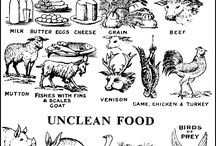 FOOD-clean/unclean