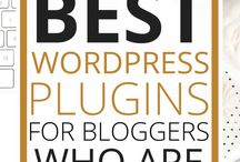 Blogging How-To / How to write a blog, how to set up a blog, how to grow your blog, best wordpress plug ins to use, how to drive traffic to your blog, how to earn money working from home