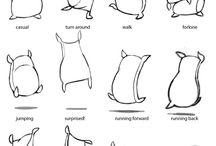 anatomia/ def. anatomica