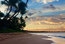 Aloha / by Christina Brown