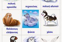 ζώα του πάγου