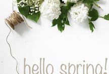 Wiosna w HOSA