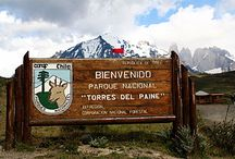 TOP TEN - Torres del Paine / tell us about your favourite Torres del Paine experience / by Hotel Las Torres