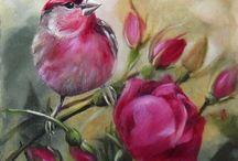 pájaros bonitos