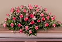 Anne's Funeral Plans / by Anne Armstrong