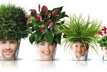 Fun family planter / Fun family planter