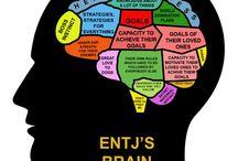 Mbti stuff / 16 brains and stuff