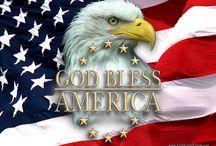 American Bald Eagle / by Sylvia Smith