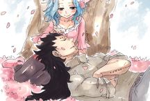 Gavy or Gajevy