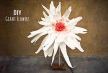Paper Flowers / by Heather Ferrell