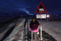 Svalbard / All about Svalbard/Spitsbergen