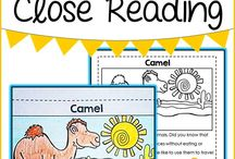 Teaching - Guided Reading