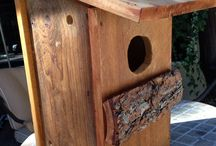 Screech Owl Box the Audubon Way / Owl box