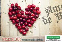 Temporada de cerezas del Jerte 2014 / Campaña promocional de la DOP Cereza del Jerte. Temporada de cerezas 2014