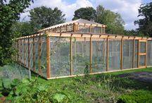 Garden - Berryarium