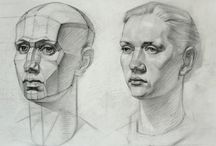 Face Anatomy