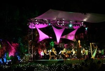 Barbados Festivals! / Join one of the many festivals on throughout the year in Barbados...