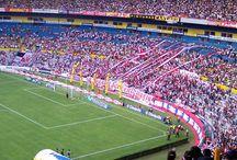 Catedrales del Fútbol