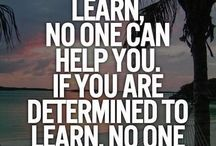 Social Enterprise Motivation