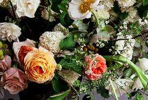 flowers / by Aliqa