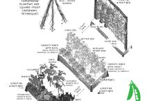 Gardening & Outdoor Ideas / by Amy Smith