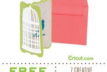 Cricut crafts / by Katherine Heumann