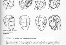 disegnare una testa
