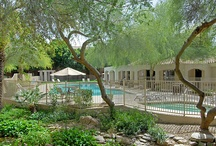 The Regents at Scottsdale - Scottsdale, AZ / 15555 N. Frank Lloyd Wright Boulevard Scottsdale, AZ 85260 (888) 696-0029 (480) 614-6502 fax  Rent: $769 - $1,385 Bedrooms: 1 - 3 Bathrooms: 1 - 2   #MarkTaylor