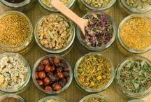 Herb and Spice News / The latest information on herbs and spices.