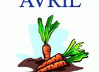 Aliments _ fruits et légumes/mois