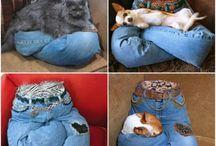 Kedi yatakları